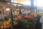 Camocim market